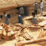 szczątki gigantów z czasów przedpotopowych